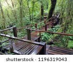 cloud forest nature tail. ang... | Shutterstock . vector #1196319043