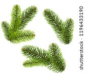 fir tree isolated isolated... | Shutterstock .eps vector #1196433190