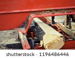 felled tree at saw mill  detail ... | Shutterstock . vector #1196486446
