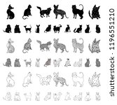 breeds of cats cartoon icons in ... | Shutterstock .eps vector #1196551210
