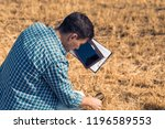 rear view man farmer agronomist ...   Shutterstock . vector #1196589553