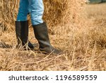 close   up of farmer's feet in...   Shutterstock . vector #1196589559