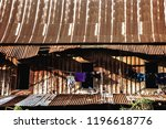 old house grung texture  retro... | Shutterstock . vector #1196618776