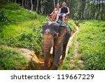Elephant Trekking In Khao Sok...