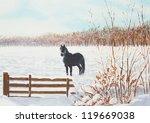 Frisian Horse In A Snowy Meado...