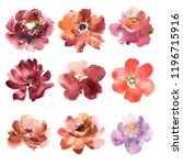 floral set. collection with... | Shutterstock . vector #1196715916