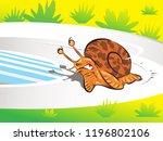 snail runing on racetrack | Shutterstock .eps vector #1196802106