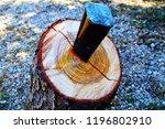 iron wedge splits wood trunk... | Shutterstock . vector #1196802910
