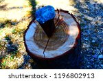 iron wedge splits wood trunk... | Shutterstock . vector #1196802913