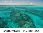 Amazing colors of coral reefs in John Pennekamp State Park, Key Largo - Florida U.S.A.