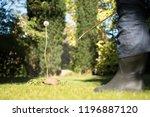 spraying weeds in the garden | Shutterstock . vector #1196887120