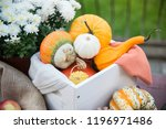 autumn festival decoration with ... | Shutterstock . vector #1196971486