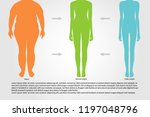 bmi or body mass index...   Shutterstock .eps vector #1197048796