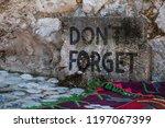bosnia  5 07 2018  a don t... | Shutterstock . vector #1197067399
