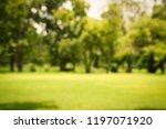 blur park with bokeh light... | Shutterstock . vector #1197071920
