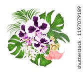 bouquet with tropical flowers ... | Shutterstock .eps vector #1197079189