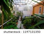 moscow  russia   september  24  ...   Shutterstock . vector #1197131350