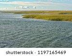 national seashore in cape cod... | Shutterstock . vector #1197165469