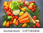 a rich variety of autumn... | Shutterstock . vector #1197181846