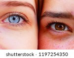 two completely different eyes ... | Shutterstock . vector #1197254350
