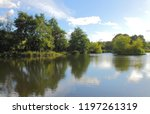 lake reflections   ball grove... | Shutterstock . vector #1197261319