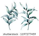watercolor silver eucalyptus... | Shutterstock . vector #1197277459
