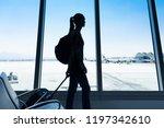female traveler walking through ... | Shutterstock . vector #1197342610