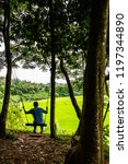 rice field in pua district ... | Shutterstock . vector #1197344890