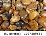 modern style close up wet round ... | Shutterstock . vector #1197389656