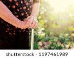 closeup hand holding walking... | Shutterstock . vector #1197461989
