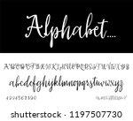 modern calligraphy vintage... | Shutterstock .eps vector #1197507730