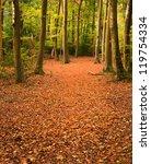 Beautiful Landscape Image Of...