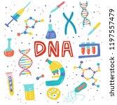 genetic engineering. genome... | Shutterstock .eps vector #1197557479