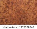 redwood burl texture  mahogany... | Shutterstock . vector #1197578260