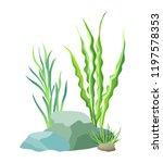 aquatic plants with big grey... | Shutterstock .eps vector #1197578353