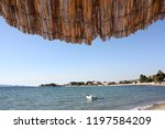 adriatic sea coast. beach | Shutterstock . vector #1197584209