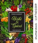 seasoning herbs and spices or... | Shutterstock .eps vector #1197601009