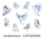 watercolor birds collection.... | Shutterstock . vector #1197604309