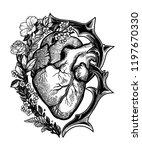ornate decorative naturalistic...   Shutterstock .eps vector #1197670330