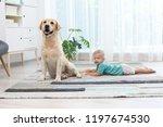adorable yellow labrador... | Shutterstock . vector #1197674530
