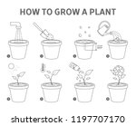 growing a plant in the pot... | Shutterstock .eps vector #1197707170