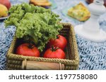 glamour picnic with homemade... | Shutterstock . vector #1197758080