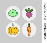 pumkin  carrot  cabbage  beet... | Shutterstock .eps vector #1197790990
