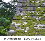 moss on roof shingles   october ... | Shutterstock . vector #1197791686
