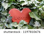 Love Heart In The Ivy