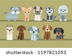 cute dogs on green background.... | Shutterstock .eps vector #1197821053