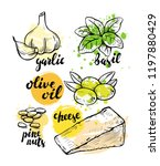 italian ingredients for pesto.... | Shutterstock .eps vector #1197880429