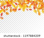 oak  maple  wild ash rowan... | Shutterstock .eps vector #1197884209