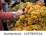 wine grapes an market. woman... | Shutterstock . vector #1197895516