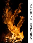 fire flames on black background. | Shutterstock . vector #1197895549